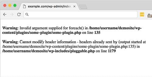 نمایش خطا در سایت وردپرس