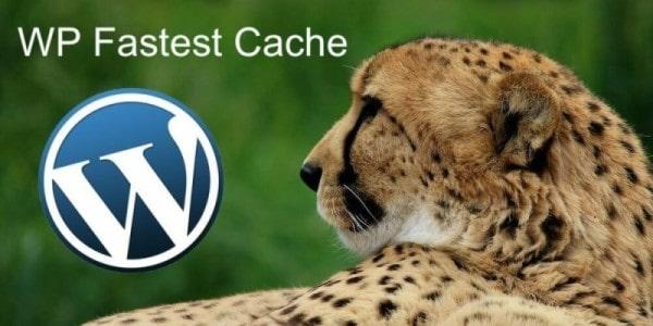 افزونه wp fastest cache وردپرس