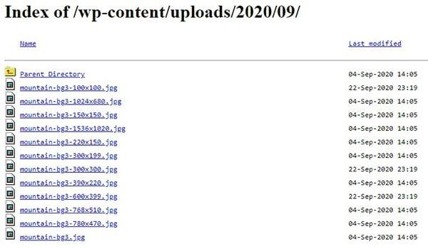 نمایش لیست فایل ها و پوشه های وردپرس با فعال بودن Directory Browsing