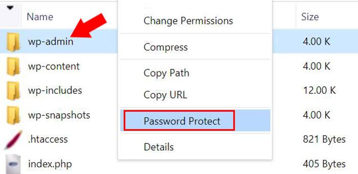 گرینه Password Protect در دایرکت ادمین